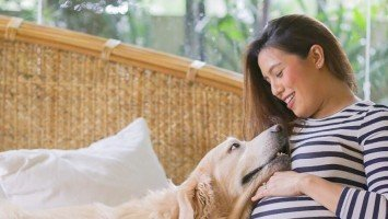 Nikki Gil bids goodbye to beloved dog Charlie