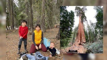 """Pika's Pick: Rica Peralejo shares family photos taken at Sequoia National Park in California; says she's pleased that her nature photos are somehow helping some people """"to calm down."""""""