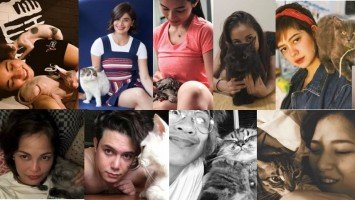 9 celebrities you didn't know were cat lovers